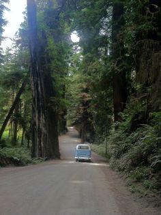 Portland-Russian River Valley Road Trip