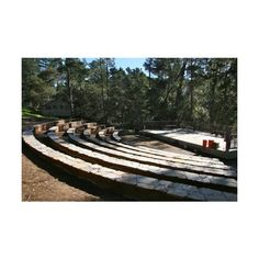 Facility Rental Camp Ocean Pines ❤ liked on Polyvore featuring images, backgrounds, camp half blood, places and random pictures