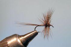 Dark Cahill Dry  Fly