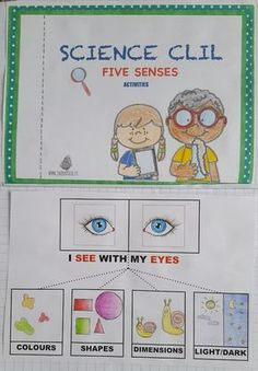 i cinque sensi in inglese scuola primaria Archivi - Jack Potato Magic English, English Time, English Words, English Lessons, Learn English, English Class, English Language Learning, Teaching English, Primary School