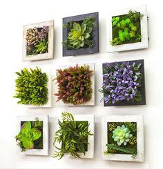 estupendos jardines verticales caseros