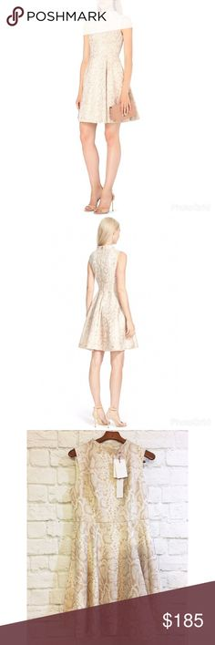"""Ted Baker London Azraa fit and flare nude dress Gorgeous fit and flare Ted baker dress. Exposed back zip, and flattering seaming details will make looking pulled together so easy. Bust 19 1/2"""" length 39"""". Brand new with tags attached. Ted baker size 5 is equivalent to a U. S 12 Ted Baker London Dresses Asymmetrical"""