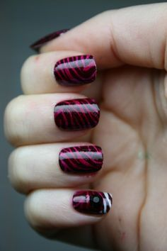Burgundy Zebra