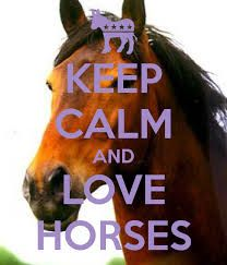 Image result for keep calm and love horses