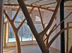 whole tree interior architecture