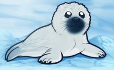 How to Draw a Seal Pup, Seal Pup, Step by Step, Sea animals . Animal Drawings, Art Drawings, Drawing Animals, Baby Walrus, Artic Animals, Cute Seals, Seal Pup, Online Drawing, Sketch Painting
