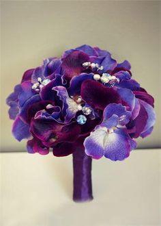 Violet <3