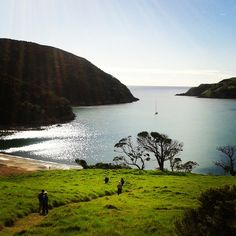 What a breathtaking hike through native bush , sandy coves and rocky headlands - Bay of Islands. Our second day of the Northland Discovery Hiking Trip