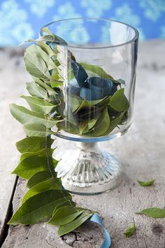 Tea Olive Leaf Ribbon