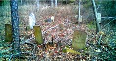 """Hollingsworth Cemetery located in Fayette County, Alabama.  Directions provided.  (Image: Robert """"Cherokee"""" Brasher in 2008;  Census provided by Frances Lowrey Brasher in 1990).  There are 10 Hollingsworth names included in this transcription.  Website notes additional information regarding inscriptions is provided at Fayette County Archives, http://files.usgwarchives.org/al/fayette/cemeteries/hollingsworth.txt  ."""