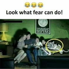 Enjoy the Best Collections of Funny Memes - Trending & Viral Meme Ever - Most Popular on Internet Now a Days. Memes about Life and more. Funny School Jokes, Some Funny Jokes, Crazy Funny Memes, Really Funny Memes, Funny Facts, Hilarious, Funny Humor, Funny Images, Funny Photos