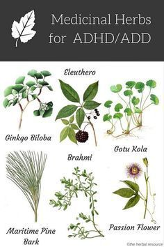 Medicinal herbs for ADHD/ADD