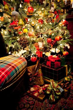 These colors are sooo festive ⊱• The tartan plaid is great ♥