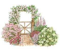 In this sun-loving garden, climbing and shrub roses highlight an arbor and walkway while perennials provide variety and contrast.
