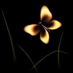 Amazing Burning Matches Photo Art by Stanislav Aristov