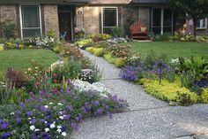 Walkway border   Kingwood, Texas Tour - Sandra Dunphy   Fine Gardening