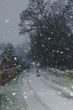 Snowy Day, The Cotswolds (photo via tisha) Winter Szenen, I Love Winter, Winter Magic, Winter Months, Winter White, Christmas Aesthetic Wallpaper, Christmas Wallpaper, Cozy Christmas, Vintage Christmas