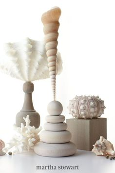 Make lasting memories of summer with shells and coral on wooden pedestals. Sea fans, organisms similar to coral, make for gracefully graphic displays. Glue them and other interesting shells to repurposed pedestals for natural looking decor. #marthastewart #crafts #diyideas #easycrafts #tutorials #hobby