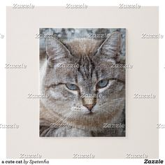 a cute cat jigsaw puzzle Make Your Own Puzzle, Custom Gift Boxes, Kittens Cutest, High Quality Images, Your Design, Jigsaw Puzzles, Kitty, Cats, Prints