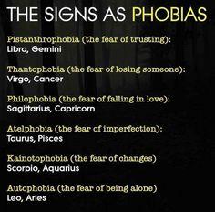 The Zodiac signs as phobias Zodiac Signs Chart, Zodiac Funny, Zodiac Signs Sagittarius, Zodiac Sign Traits, Zodiac Memes, Zodiac Star Signs, Zodiac Horoscope, Gemini Gemini, Sagittarius In Love