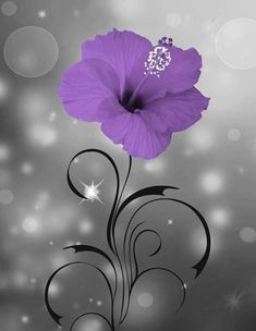 Purple Floral Home Decor Modern Bathroom Bedroom Purple Wall Art Picture Status: Available! Purple Wall Decor, Purple Walls, Mauve, Romantic Bedroom Design, Bathroom Wall Decor, Modern Bathroom, Bedroom Wall, Beautiful Nature Wallpaper, Beautiful Images