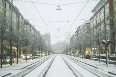The first snow in Stockholm -