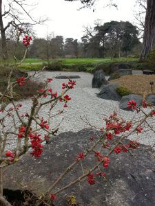 Japanese style garden, my visit to Kew, and loads of inspiration!