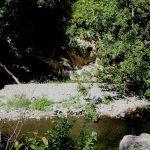 Olivetta San Michele (IM) - il torrente Bevera lungo la strada verso la Borgata Bossaré