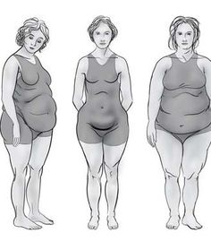 Learn about the four new body shapes and types determined by your hormones.