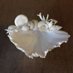 Unique and Beautiful- A Decorative Clam Seashell Dish to hold Rings, Soap, Candy. Or This seashell will look so beautiful in your small Ringbearer's hands. and use as a decoration, soap dish or jewelr