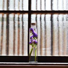 151da5f754 86件】ハーバリウム  おすすめ画像  2019   How to preserve flowers ...