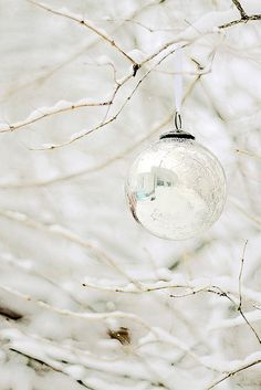merry christmas! by Jackie Rueda, via Flickr