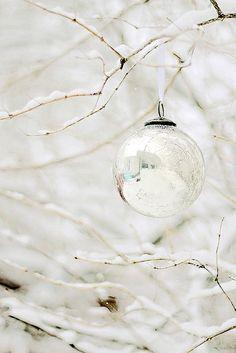 snowy ♥