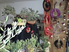 Bonsai and Christmas Wreaths by Herber Plants Designs