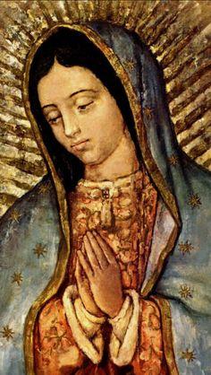 Hay que rezar por Mexico en esta grave situación. Dios te salve María llena eres de gracia, el señor es contigo y bendita tu eres entre todas las mujeres y bendito es tu fruto en tu vientre Jesus. Santa Maria madre de Dios ruega por nosotros los pecadores ahora y en la hora de nuestra muerte. Amen.