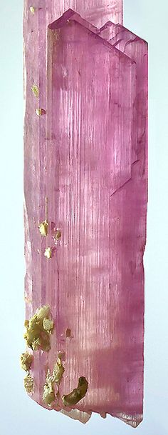 MUSEUM QUALITY!! Incredible specimen of Spodumene var. Kunzite From Dara-i-Pech District, Kunar Province, Afghanistan. Measures 30.4 cm by 4.1 cm by 2.4 cm in total size.