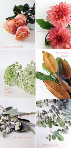 Flower arranging - choosing leaves and foliage