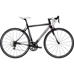 1000 images about road bikes on pinterest bikes scott contessa