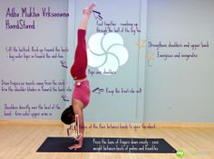 240 best yoga sequences images  yoga sequences yoga