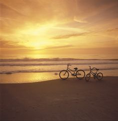 Exploring Marina del Rey by bike is one of the best ways to experience the area when visiting The Ritz-Carlton, Marina del Rey.