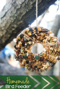 Homemade Hanging Bird Feeder DIY