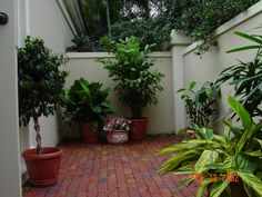 courtyard off guest room