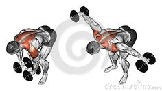 Lifting Dumbbell In Hand To Lean Forwa Stock Illustration - Illustration of lower, exercising: 43605552 Tabata Cardio, Abs And Cardio Workout, Workout Routine For Men, Gym Workout For Beginners, Gym Workout Tips, Dumbbell Workout, At Home Workouts, Pole Fitness, Muscle Fitness