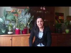 Global Rockstar Vote for Sheila Grace! Grace Youtube, Sheila, Channel