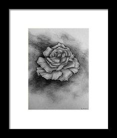Single Rose Framed Print by Faye Anastasopoulou Pencil Sketch Drawing, Bloom Blossom, Rose Frame, Single Rose, Designs To Draw, Framed Art Prints, Fine Art America, Drawings, Illustration