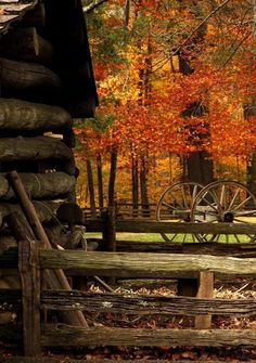 Autumn Landscape with old log rustic cabin