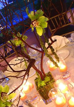 green flowers and tree Centerpiece