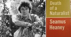 """Seamus Heaney and Death of a Naturalist: from it we can also work back to those more ephemeral instances of publication. There we find, to quote Digging, the """"living roots"""" of his writing life"""