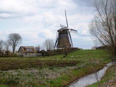 Het Groene Hart, Zuid-Holland, Netherlands.