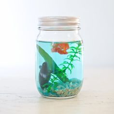 Cute DIY Mason Jar Ideas - DIY Mason Jar Aquarium - Fun Crafts, Creative Room Decor, Homemade Gifts, Creative Home Decor Projects and DIY Mason Jar Lights - Cool Crafts for Teens and Tween Girls http://diyprojectsforteens.com/cute-diy-mason-jar-crafts